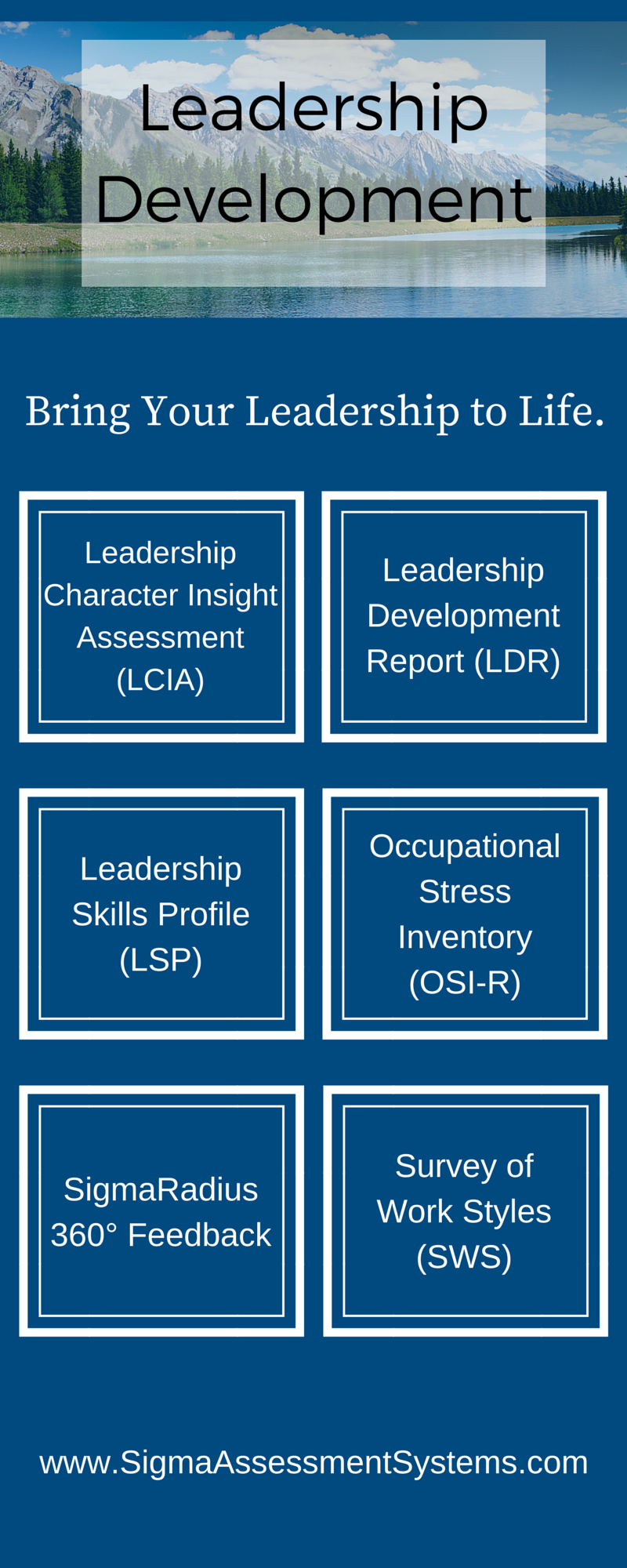 Leadership Development Assessments Sigma