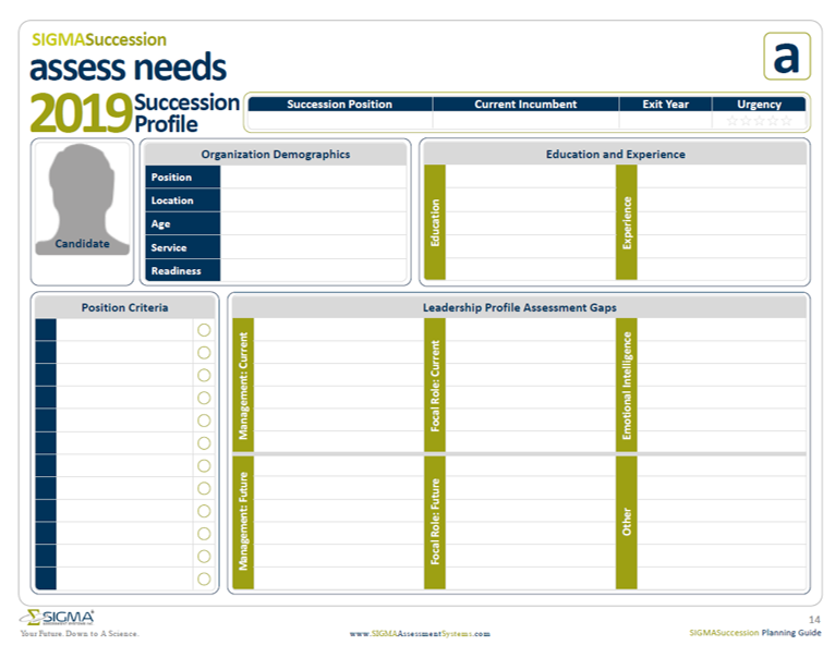 Sigma Assessment Systems Succession Profile Template for assessing development needs in succession planning